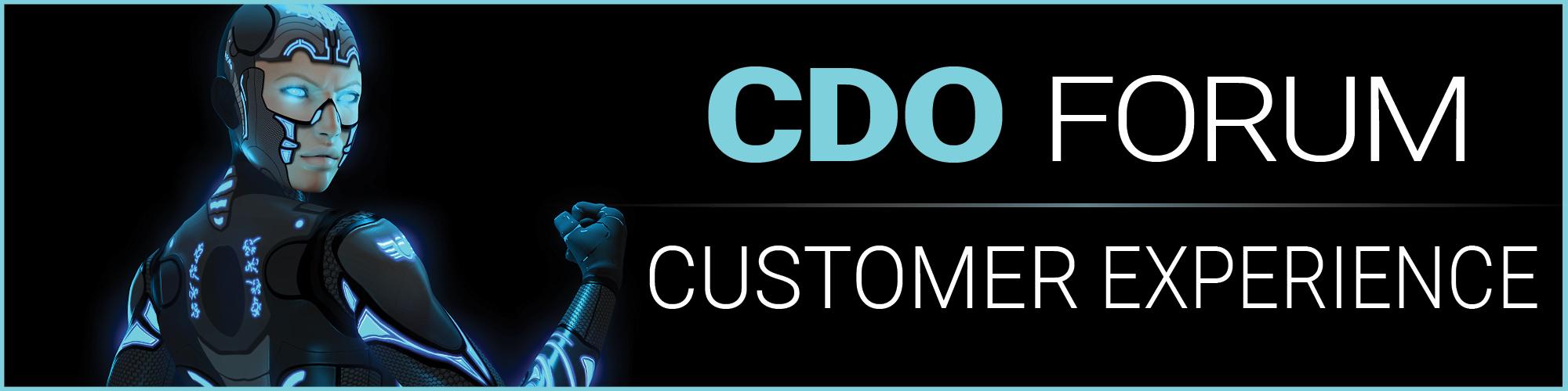 מפגש ראשון לפורום CDO - מפת הדרכים לדיגיטל banner