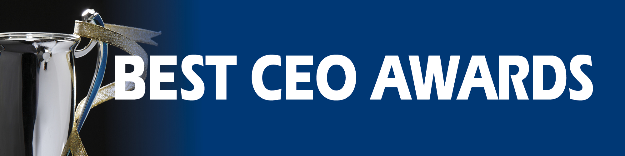 CEO AWARDS 2017 banner